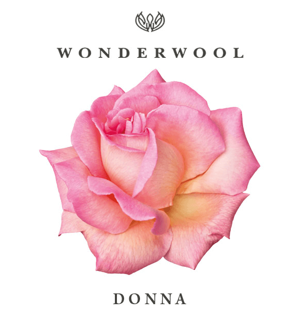 Rosa-donna-cropped copy